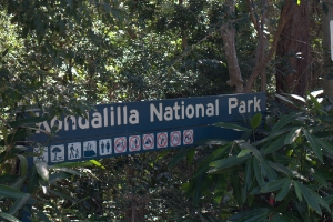 Kondalilla National Park